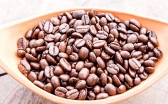 Café de torréfacteur dans les dosettes compatibles
