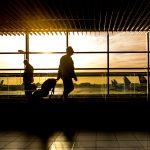 Le métier de travel manager
